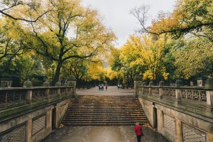 Prospect Park is considered to be the most beautiful park in Brooklyn