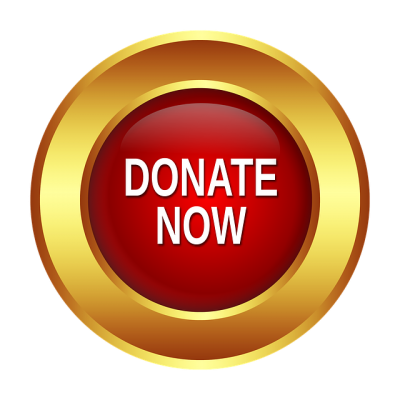 """""""Donate now"""" button."""
