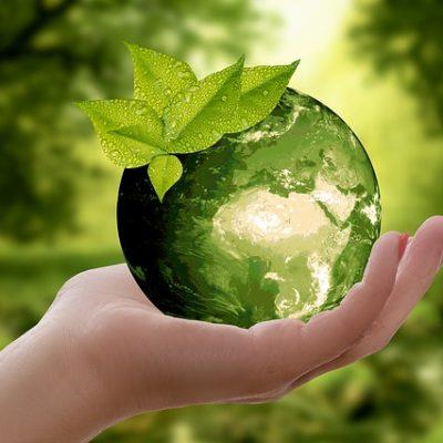 Organize an eco-friendly move.